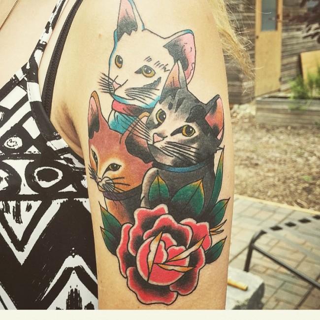 cat (11)