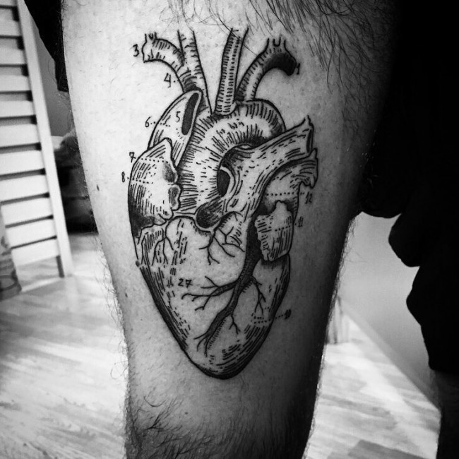 anatomical heart tattoos