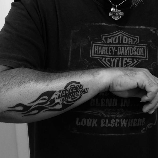 halery davidson big check shirt