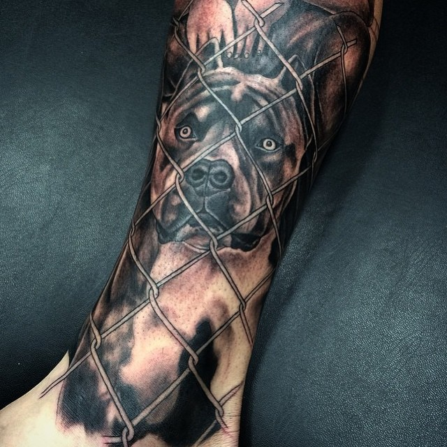 suomi 24 tornio pitbull tattoo
