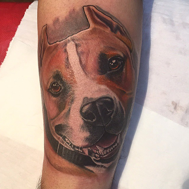 9c42085e4464a 70+ Pitbull Tattoo Designs & Meanings - For the Dog Lovers (2019)
