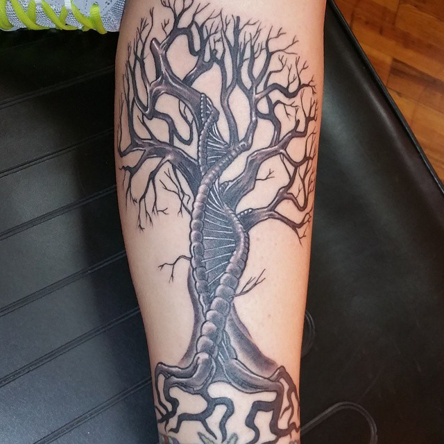 Family Tree Tattoo Ideas: Tree Tattoos
