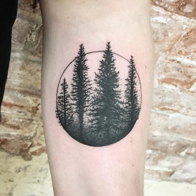pine tree tattoos