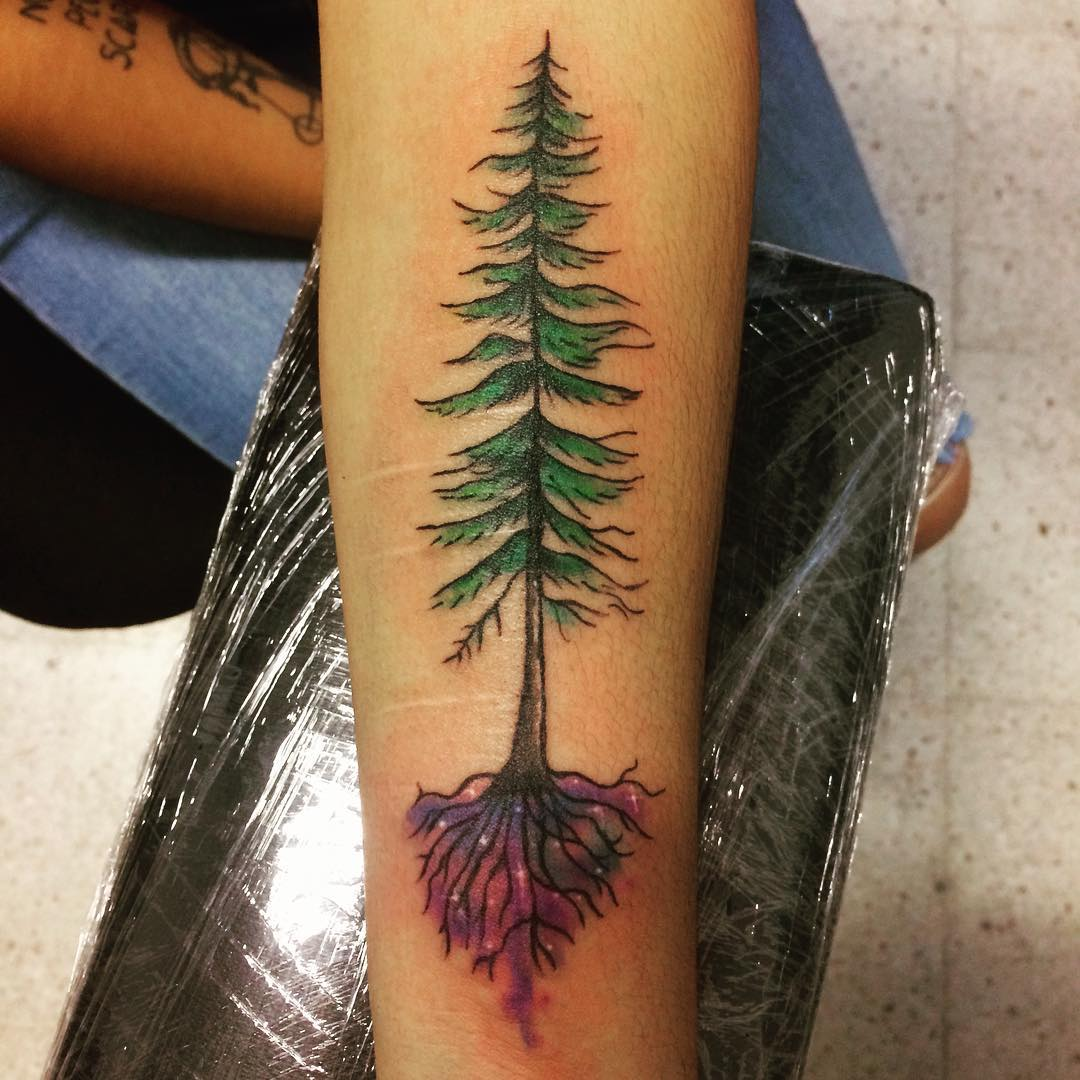 75 simple and easy pine tree tattoo designs meanings for Tree tattoo on forearm
