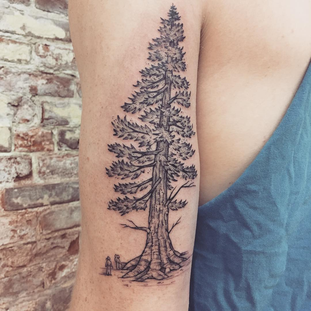 75 simple and easy pine tree tattoo designs meanings 2018. Black Bedroom Furniture Sets. Home Design Ideas