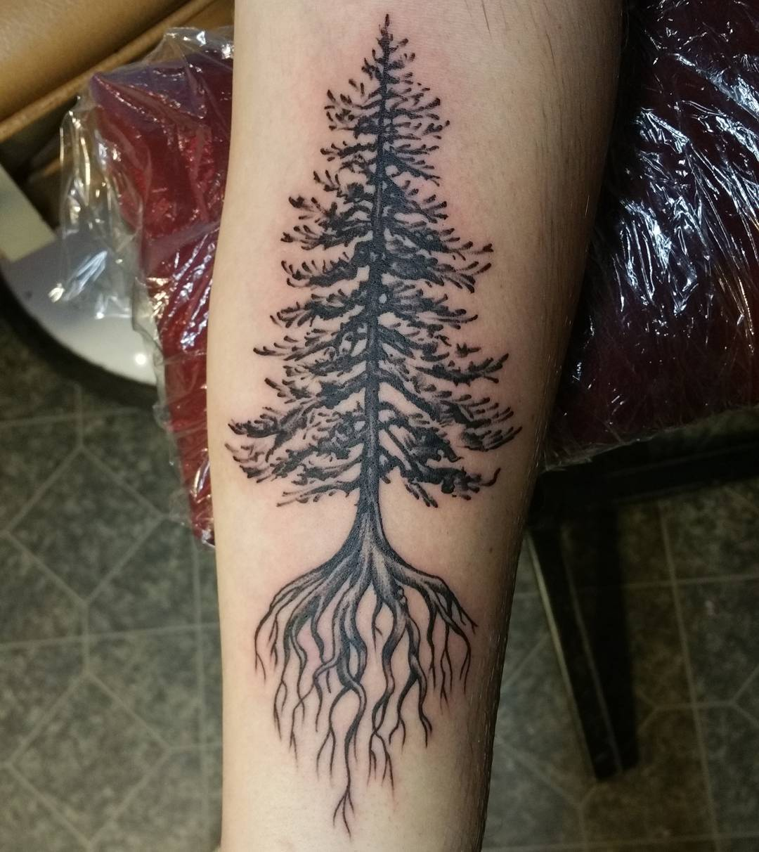 Oak Tree With Roots Tattoo: 75+ Simple And Easy Pine Tree Tattoo