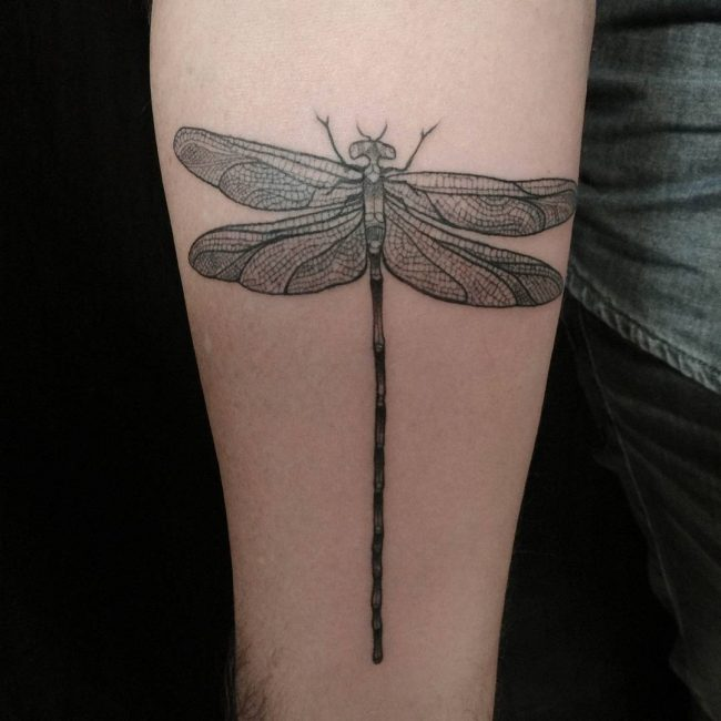 dragonfly tattoo_