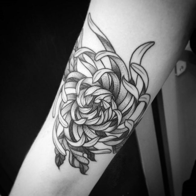 chrysanthemum tattoo11