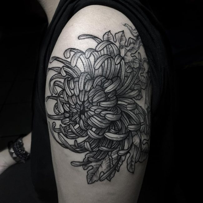 chrysanthemum tattoo14