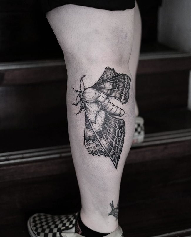moth tattoo1