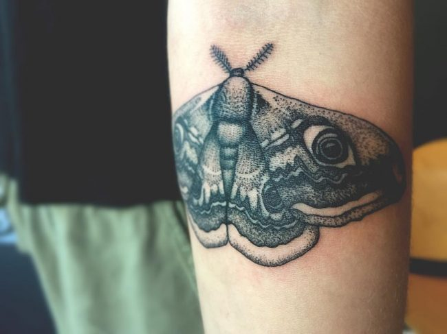 moth tattoo45