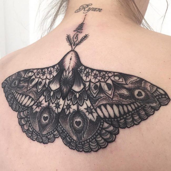 moth tattoo50