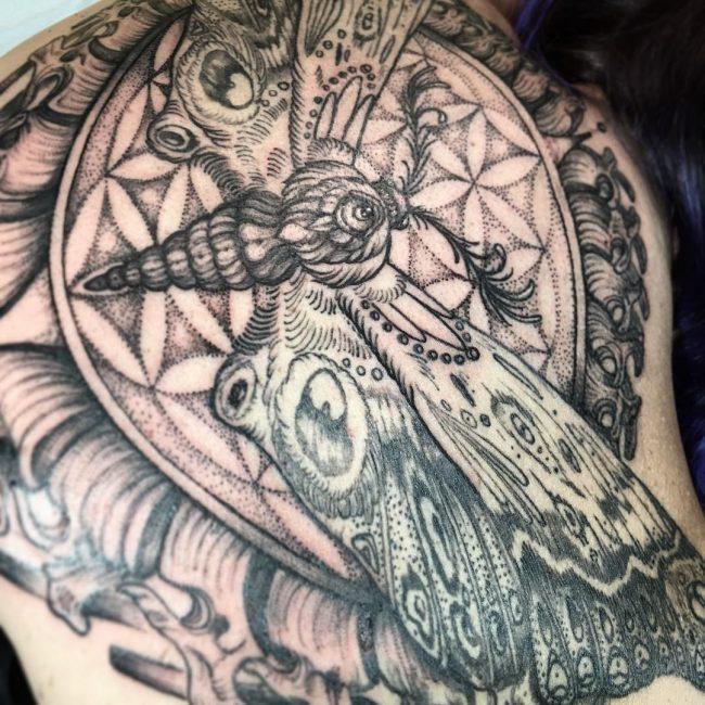 moth tattoo51