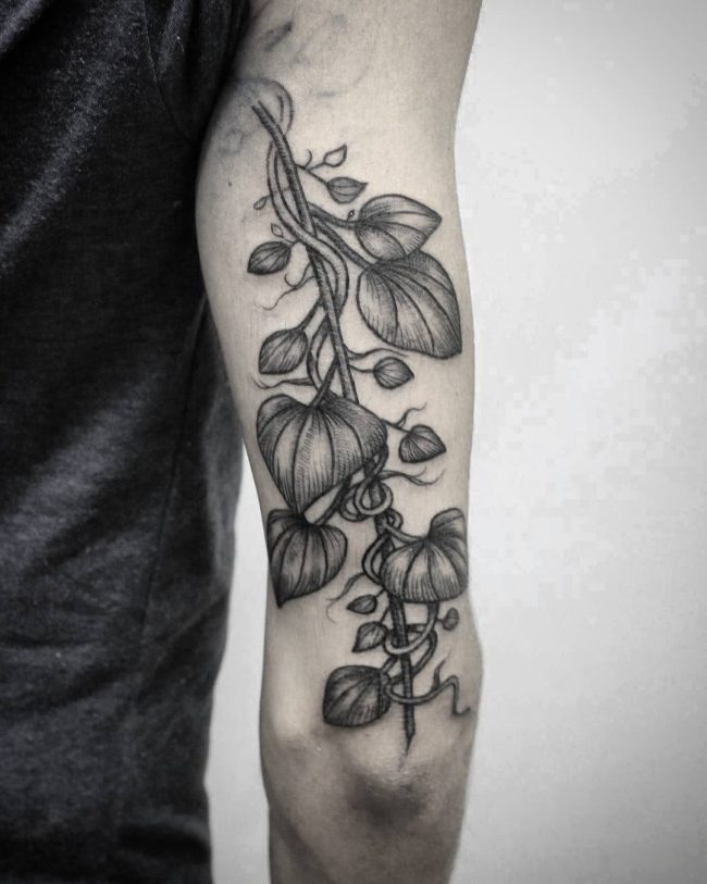vine tattoo43