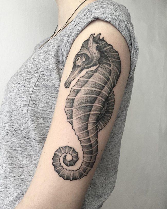 seahorse tattoo37