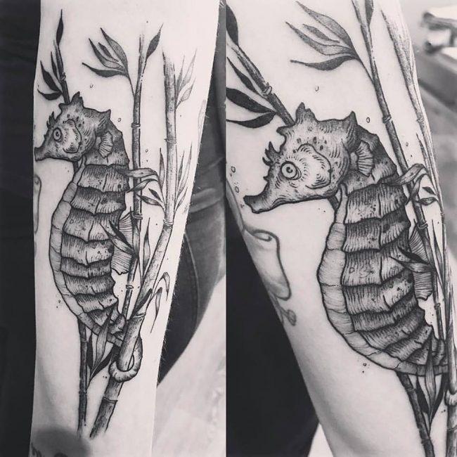 seahorse tattoo9
