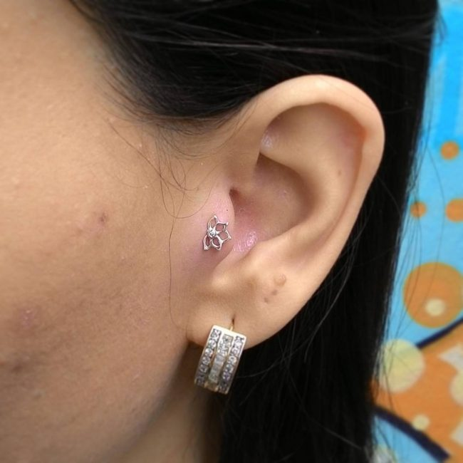 types-of-ear-piercings24