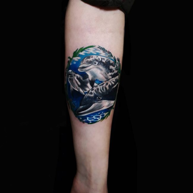 Dolphin Tattoo 51