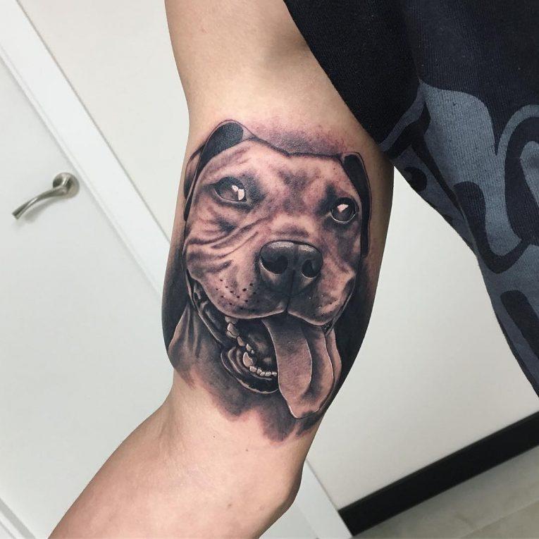 Pitbull Tattoo 71
