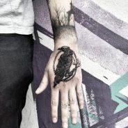 Raven Tattoo 66