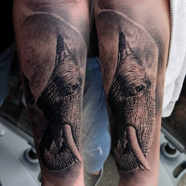 Elephant Tattoo 114