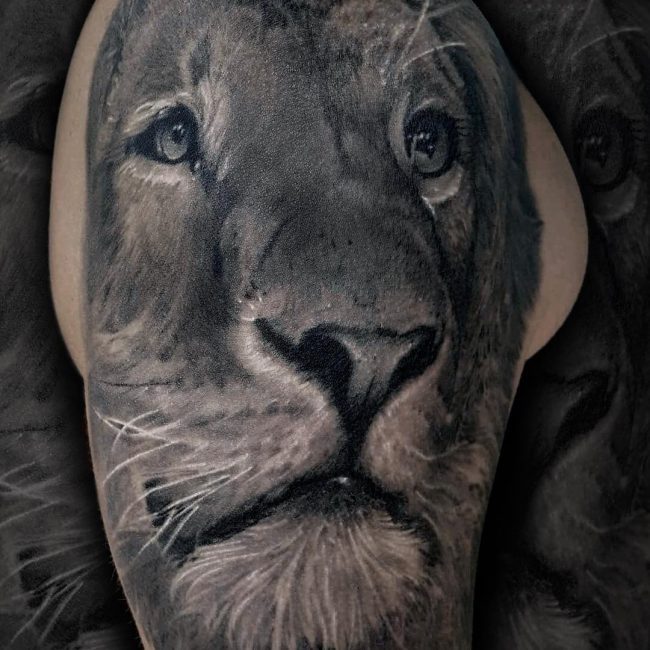 Lion Tattoo 96