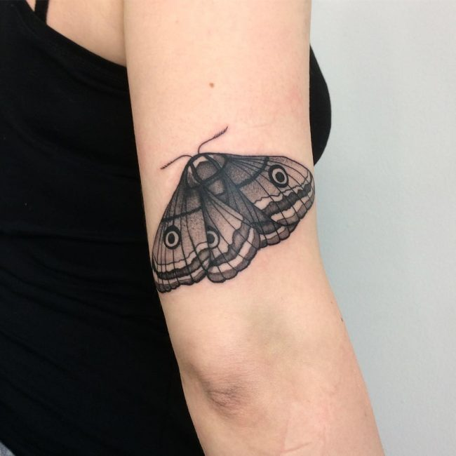Moth Tattoo 74