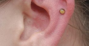 Cartilage Piercing 30