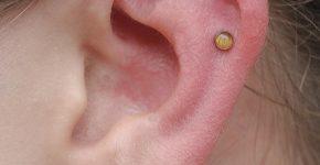 Cartilage Piercing 30