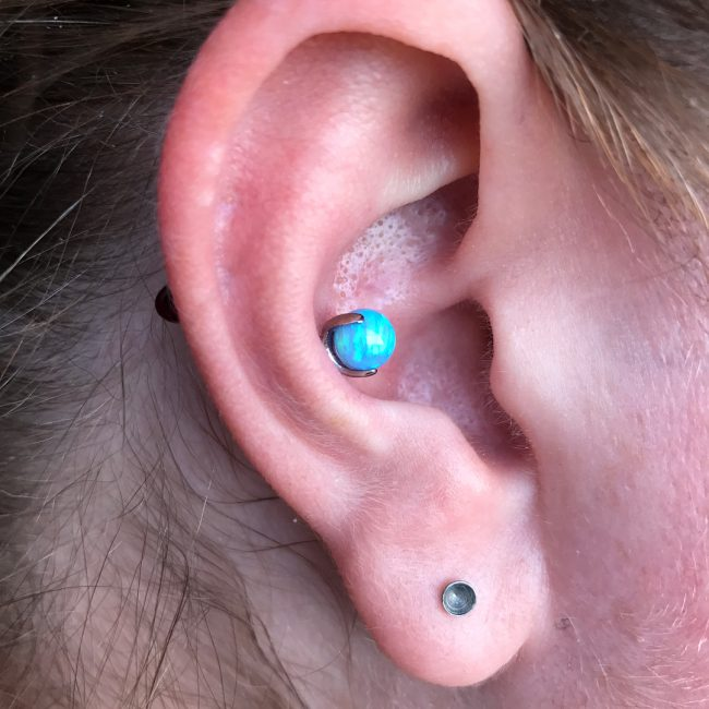 Conch Piercing 17