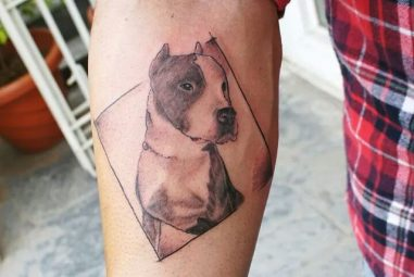 70+ Pitbull Tattoo Designs & Meanings – For the Dog Lovers (2018)