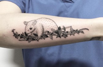 50 Amazing Vine Tattoo Ideas – Discover Their True Meaning